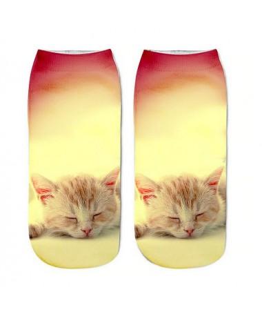 kotníkové ponožky spící koťátko
